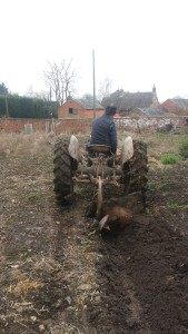 Ploughing up the garden
